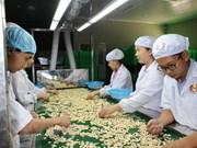 Agriculture: régler les difficultés pour parvenir à une valeur d'exportations de 40 milliards d'USD