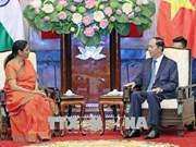 Pour dynamiser la coopération dans la défense Vietnam-Inde