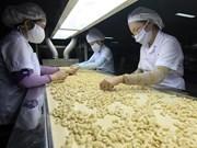 Le Vietnam exporte 141.000 tonnes de noix de cajou en cinq mois