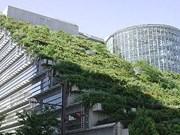 Le Vietnam aussi adopte le leadership en conception énergétique et environnementale