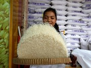 Le Cambodge exporte plus de 271.000 tonnes de riz au premier semestre de 2018
