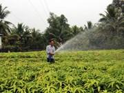 Adapter l'agriculture à la nouvelle donne climatique au Vietnam