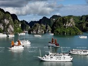 Baie de Ha Long : Nouvelle tarification de visite à l'horizon