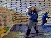 Protection des forêts : Thanh Hoa recevra plus de 50.000 tonnes de riz