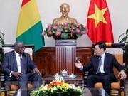 Le Vietnam et la Guinée cherchent à développer leur coopération