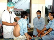 Vietnam : 1.158 cas de grippe A/H1N1 confirmés