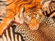 Séminaire sur la lutte contre le trafic d'animaux sauvages