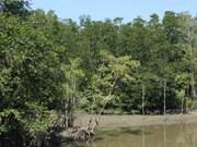 L'Allemagne aide le Vietnam à protéger la biodiversité
