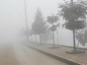 De nouvelles vagues de froid d'ici le Tet du Chat 2011