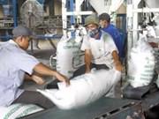 Riz: le VN exportera 6 millions de tonnes en 2011
