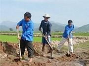 Delta du Mékong: démarrage d'un projet d'aide aux riziculteurs