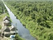 Aide de la FAO à la gestion forestière