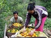 Le Vietnam, exemplaire dans son développement