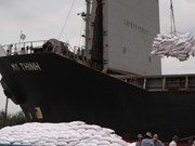 Le Vietnam va exporter 50.000 tonnes de riz en Sierra Leone