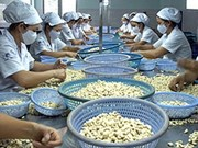 Vietnam-Cambodge : un commerce bilatéral en forte croissance