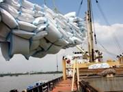 Plus de 3,5 M de tonnes de riz exportés au premier semestre