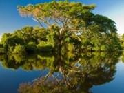 Création d'un site web sur les lacs de Hanoi