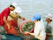 Aquaculture : soutien de la FAO pour un développement durable