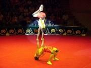 Le Vietnam couronné au Festival international du cirque à Cuba