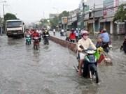 HCM-Ville fait face au changement climatique