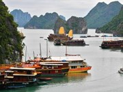 Ha Long continue de recueillir des suffrages