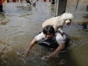 Thaïlande : Assistance aux victimes des inondations