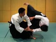 Festival d'aïkido international à Hanoi