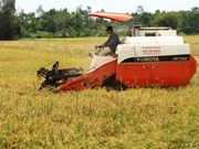 """Séminaire """"Vietnam: voie de développement de riz de haute qualité"""""""