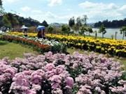 La nouveauté du Festival floral Da Lat 2012
