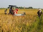Coopération Vietnam-Etats-Unis dans l'agriculture