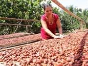 ONG: 165,5 millions de dollars d'assistance au Vietnam en 2012