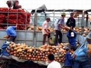 Resserrement des liens socioéconomiques entre Kon Tum et Ratanakiri