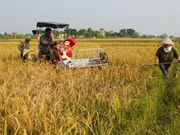 Agriculture : aide danoise de 28 milliards de dongs