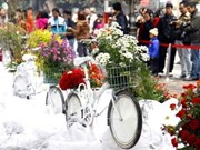 Près de 4 millions de visiteurs aux Floralies de Hanoi