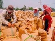 Anti-pauvreté au centre d'une conférence de la FAO