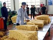 La filière bois, une industrie en plein essor