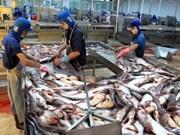 Les exportations de pangasius continuent à croître