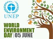 Ha Long va fêter la Journée mondiale de l'environnement