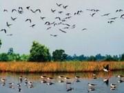 Parc national de Tram Chim, nouveau site Ramsar