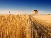 Agriculture : l'APEC débat sur la sécurité alimentaire