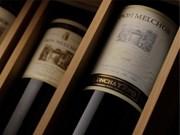 Le Chili promeut l'exportation du vin au Vietnam