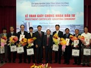 Binh Duong attire 17 projets d'IDE
