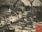 Les pilons ne chantent plus dans le village de Yên Thai