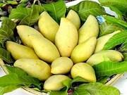 Publication du Top des meilleures spécialités du Vietnam