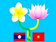 Activités culturelles célébrant l'Année de l'amitié Vietnam-Laos