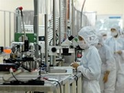 HCM-Ville attire des scientifiques dans sa zone des hautes technologies