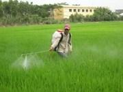 Le Vietnam et le PNUD coopèrent dans la gestion des produits chimiques