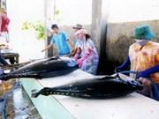 Séminaire sur la gestion de la pêche du thon à Da Nang