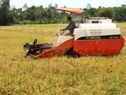 Premier Prix du riz d'or du Vietnam