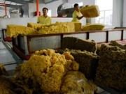 Vietnam-Malaisie : forte augmentation des échanges commerciaux